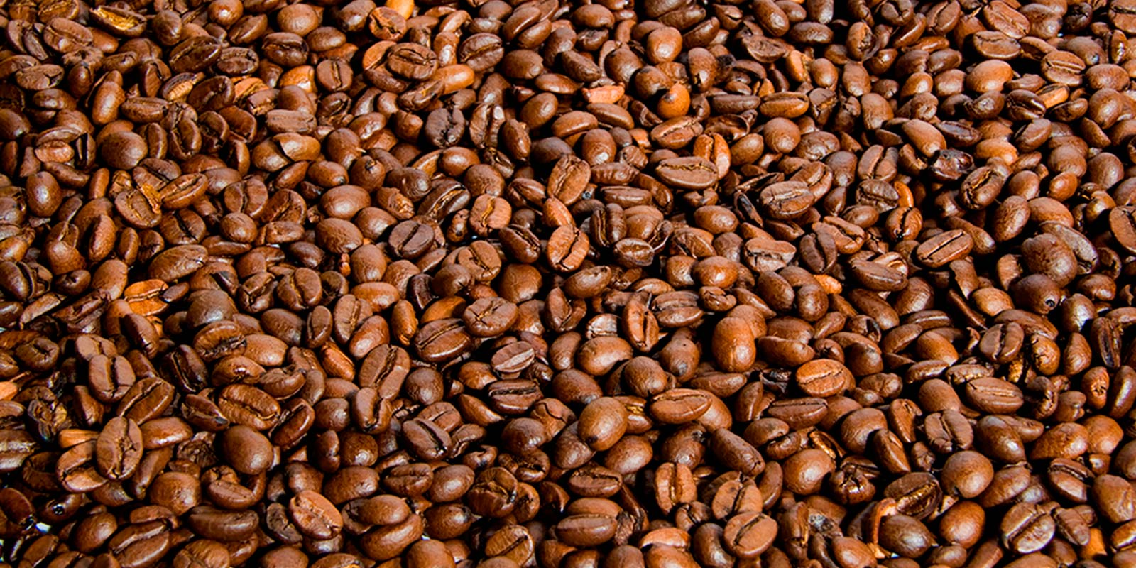 bg_coffee1-e1426080649570